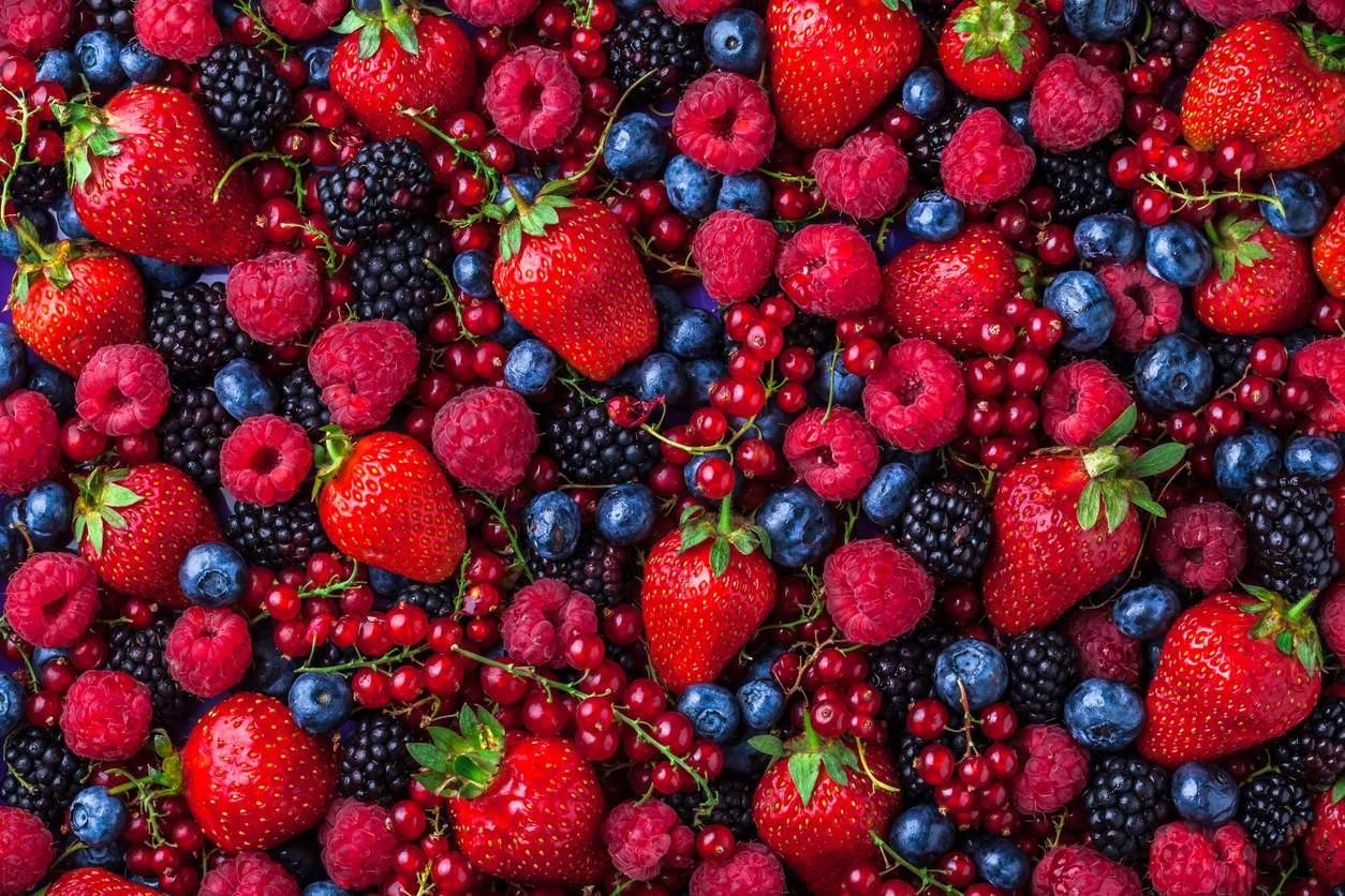 ARGENTINA: El presidente de Extraberries, Adolfo Storni, habla sobre el presente y futuro de la industria frutícola en la Argentina