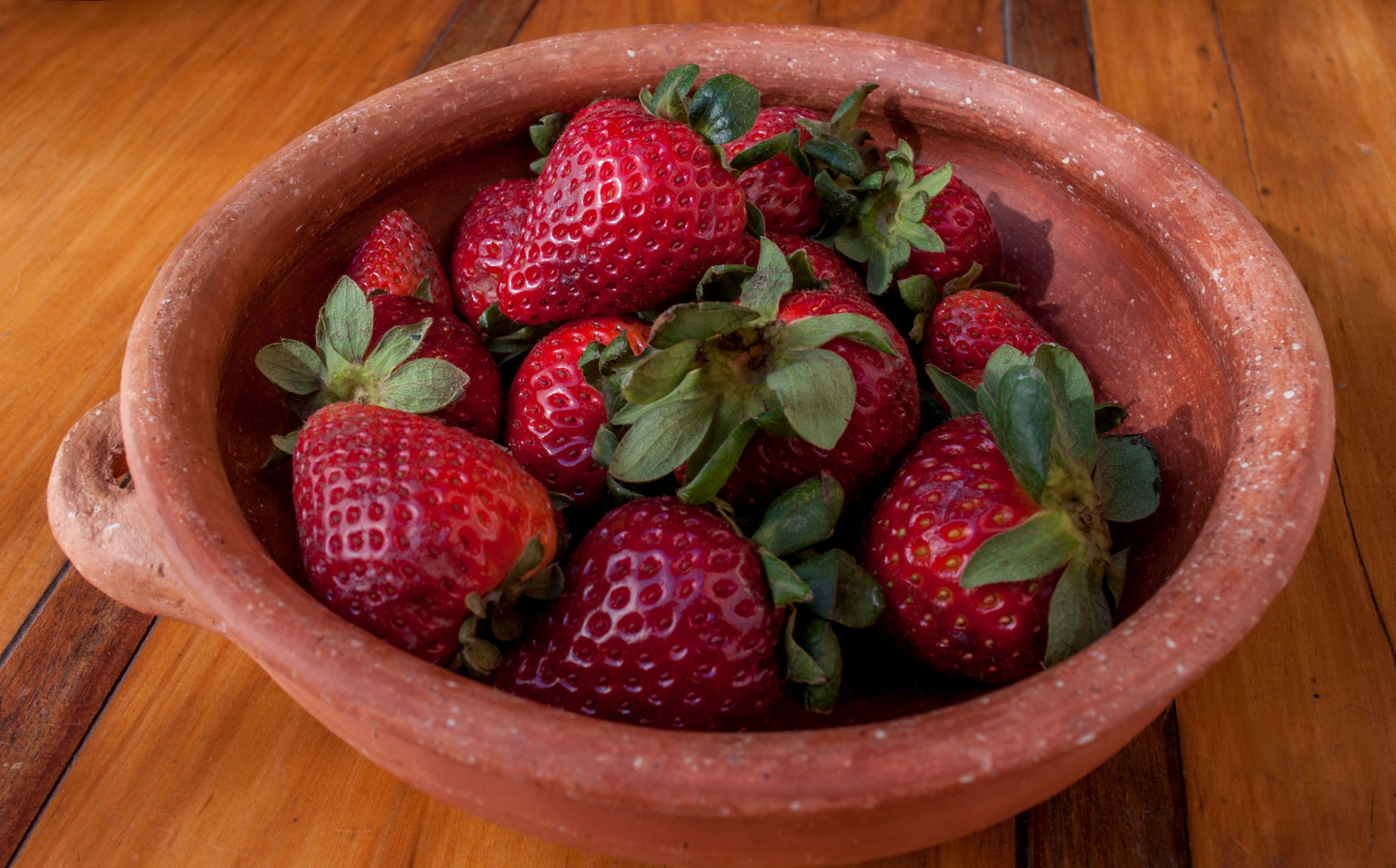 Frutillas: una fruta muy apreciada en Argentina